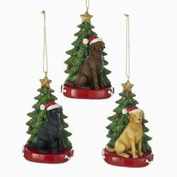 Black Chocolate Yellow Labrador Retriever With Santa Hat Christmas Tree Red Dog Bed Ornament